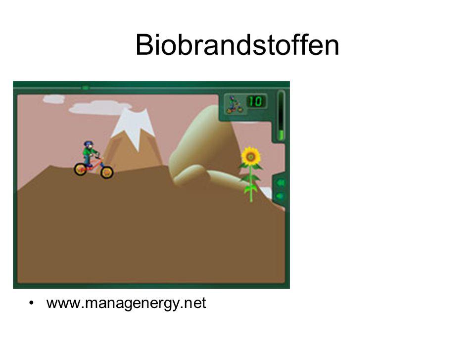 Biobrandstoffen www.managenergy.net