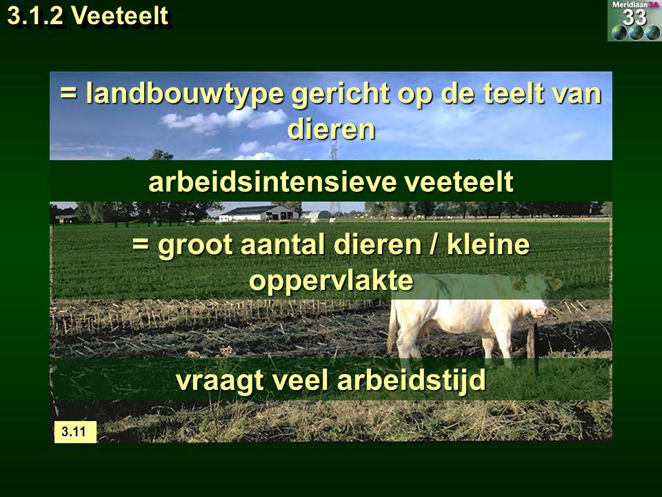 3.1.2 Veeteelt = landbouwtype gericht op de teelt van dieren arbeidsintensieve veeteelt = groot aantal dieren / kleine oppervlakte vraagt veel arbeids