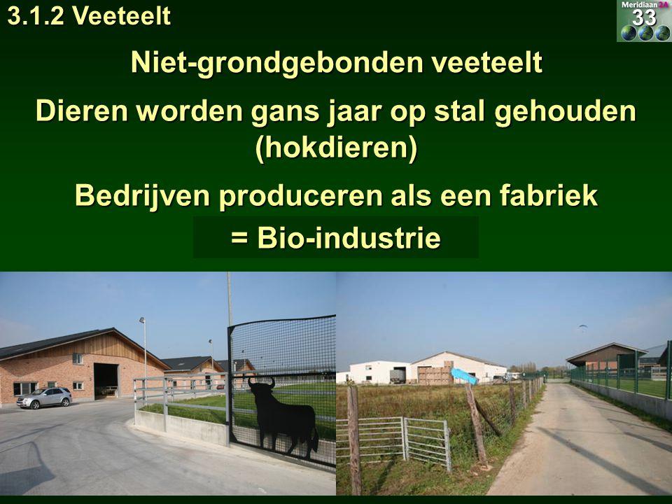 Dieren worden gans jaar op stal gehouden (hokdieren) Niet-grondgebonden veeteelt Bedrijven produceren als een fabriek = Bio-industrie 33 3.1.2 Veeteel