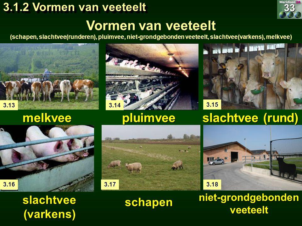 3.13 melkveepluimvee slachtvee (rund) schapen slachtvee (varkens) niet-grondgebonden veeteelt 3.14 3.15 3.163.173.1833 3.1.2 Vormen van veeteelt Vorme