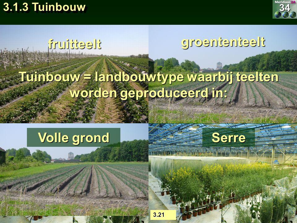 fruitteelt groententeelt Tuinbouw = landbouwtype waarbij teelten worden geproduceerd in: 3.21 Serre sierteelt Volle grond 34 3.1.3 Tuinbouw