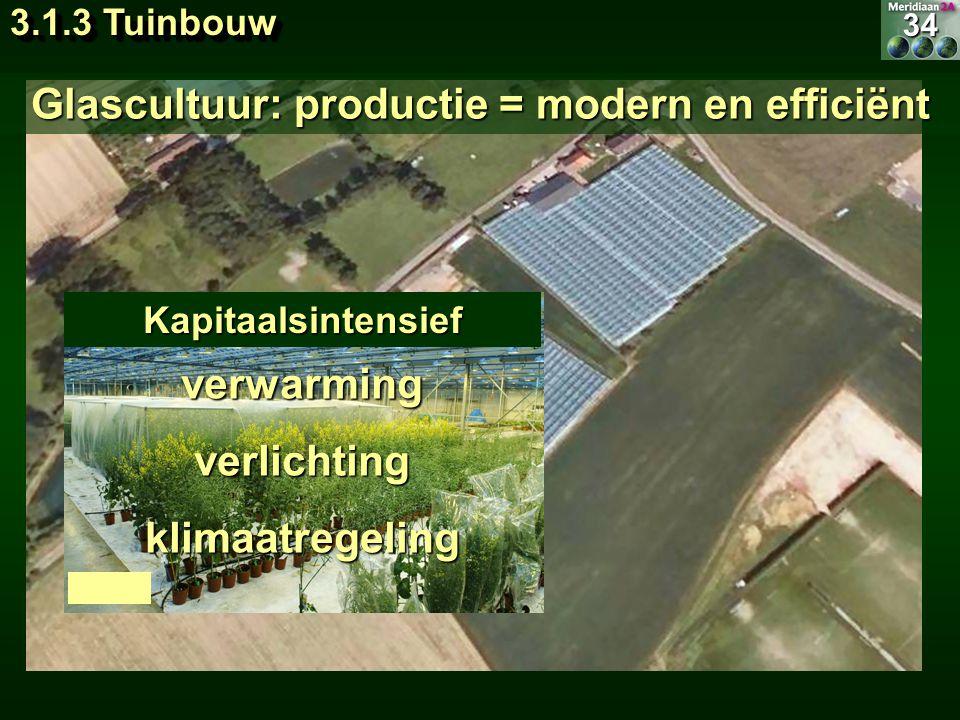 Glascultuur: productie = modern en efficiënt verwarmingverlichtingklimaatregeling Kapitaalsintensief34 3.1.3 Tuinbouw