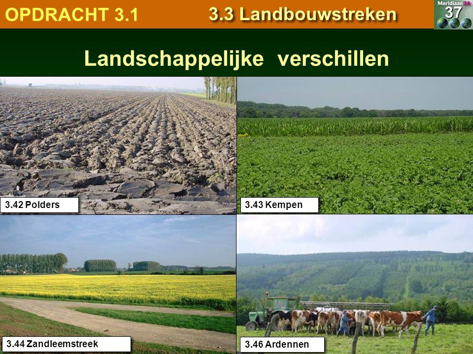 7.1.1 Natuurlandschappen OPDRACHT 3.1 3.3 Landbouwstreken Landschappelijke verschillen 3.56 POLDERS 3.43 Kempen 3.44 Zandleemstreek 3.42 Polders 37 3.