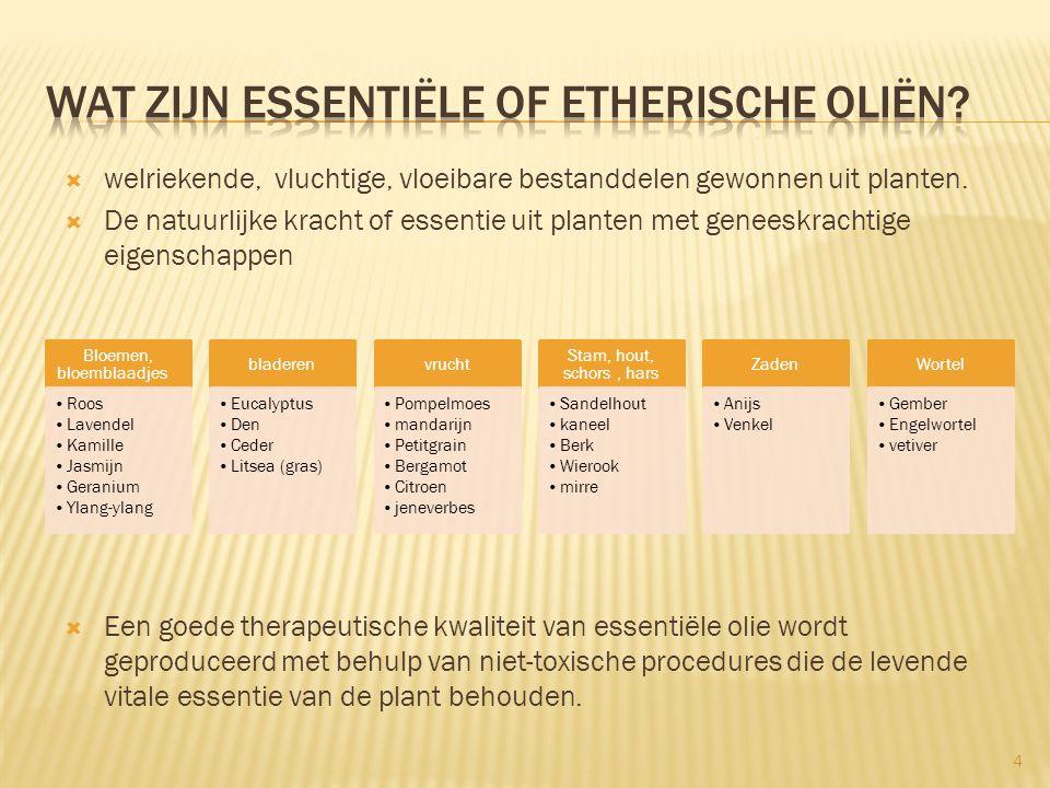 5 Actieve bestanddelen van e.o.