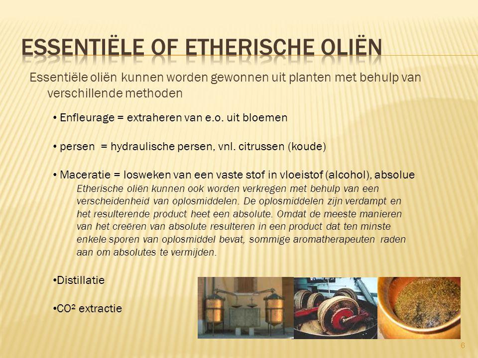  Basisoliën zijn vette oliën van plantaardige oorsprong geperst uit noten, kiemen, zaden, pitten of vruchten  Basisoliën zijn dragers voor e.o.