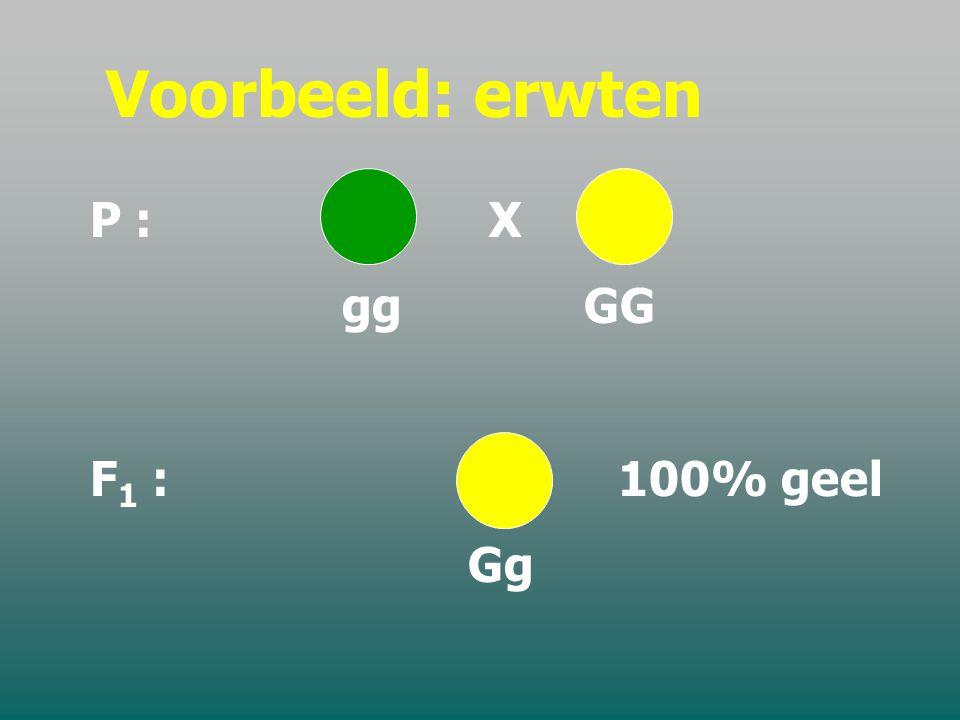 Symbolische uitdrukking P 1 AA x aa gameten A & a F 1 Aa (hybride) F 1 Aa (hybride)