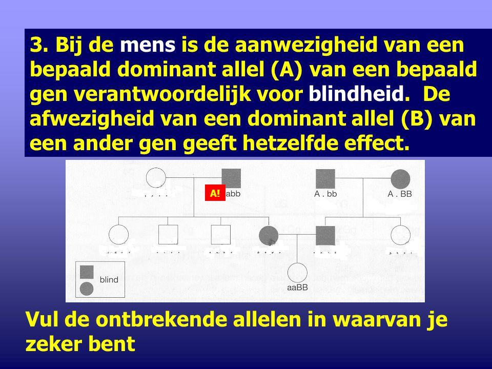 2. Bij de mens is een dominant allel noodzakelijk voor de ontwikkeling van een normaal slakkenhuis in het inwendige oor. Een dominant allel van een ge