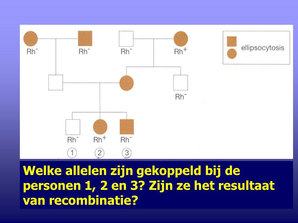 2.Resuspositiviteit is te wijten aan de aanwezigheid van het dominante allel Rh.