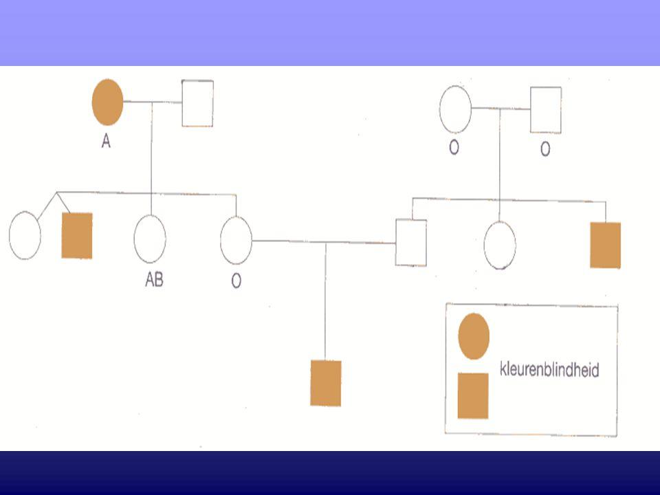5.Het gen dat de ABO-bloedgroep bepaalt, is gelegen op chromosoom 9.