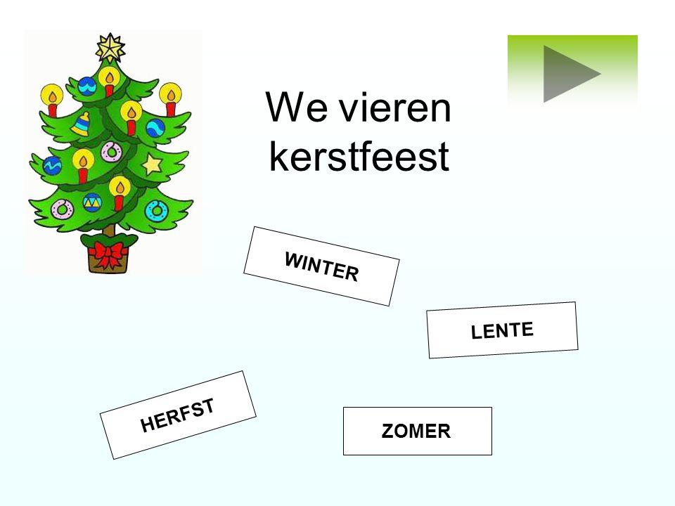 We vieren kerstfeest WINTER HERFST ZOMER LENTE