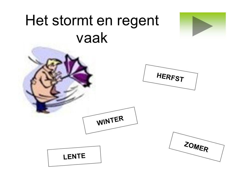 Het stormt en regent vaak LENTE WINTER ZOMER HERFST