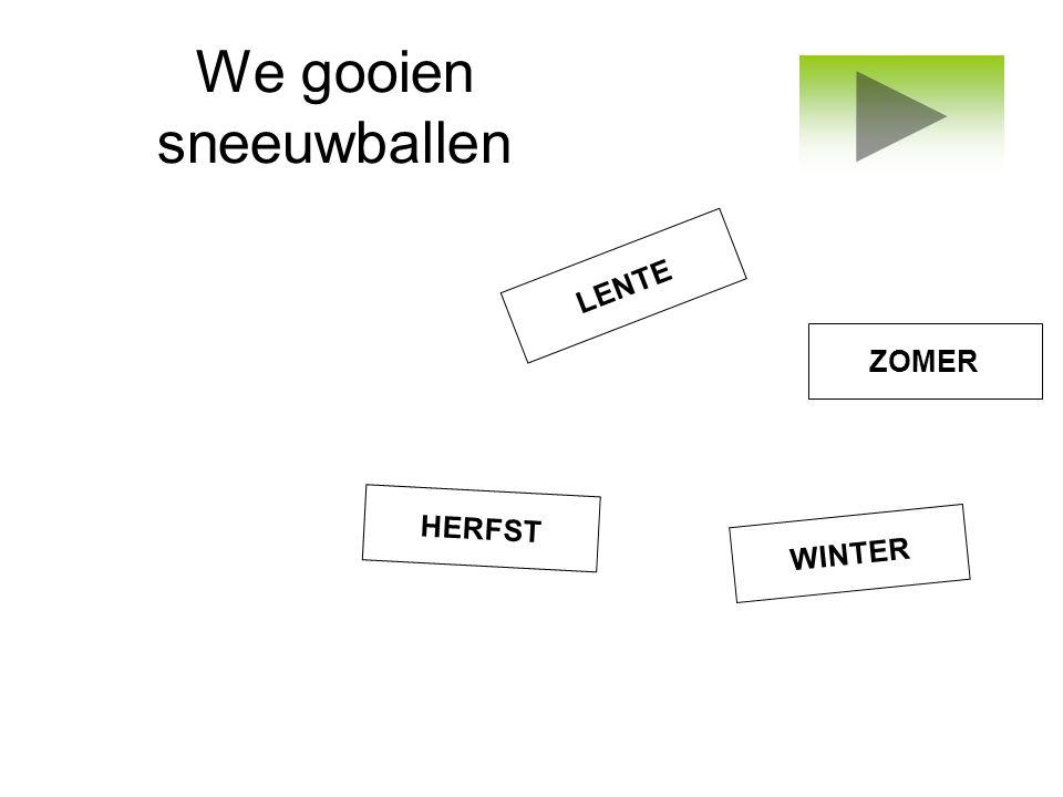 We gooien sneeuwballen WINTER ZOMER LENTE HERFST