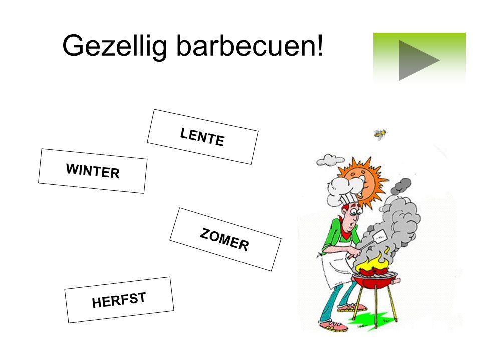 Gezellig barbecuen! ZOMER LENTE WINTER HERFST