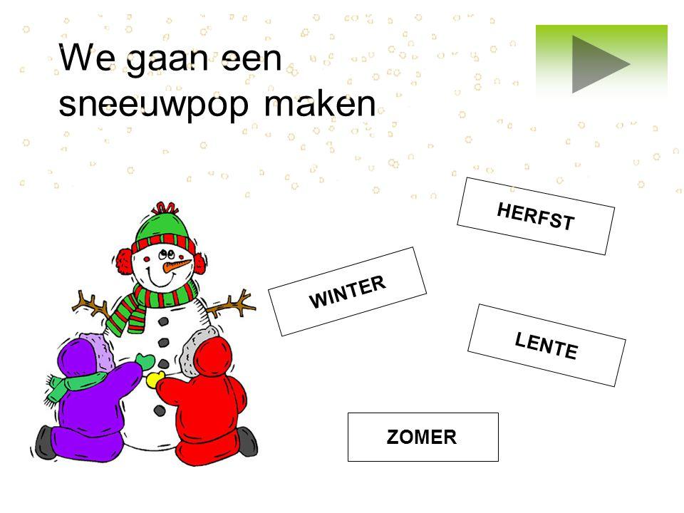 We gaan een sneeuwpop maken WINTER ZOMER LENTE HERFST