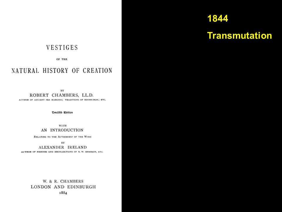 1844 Transmutation