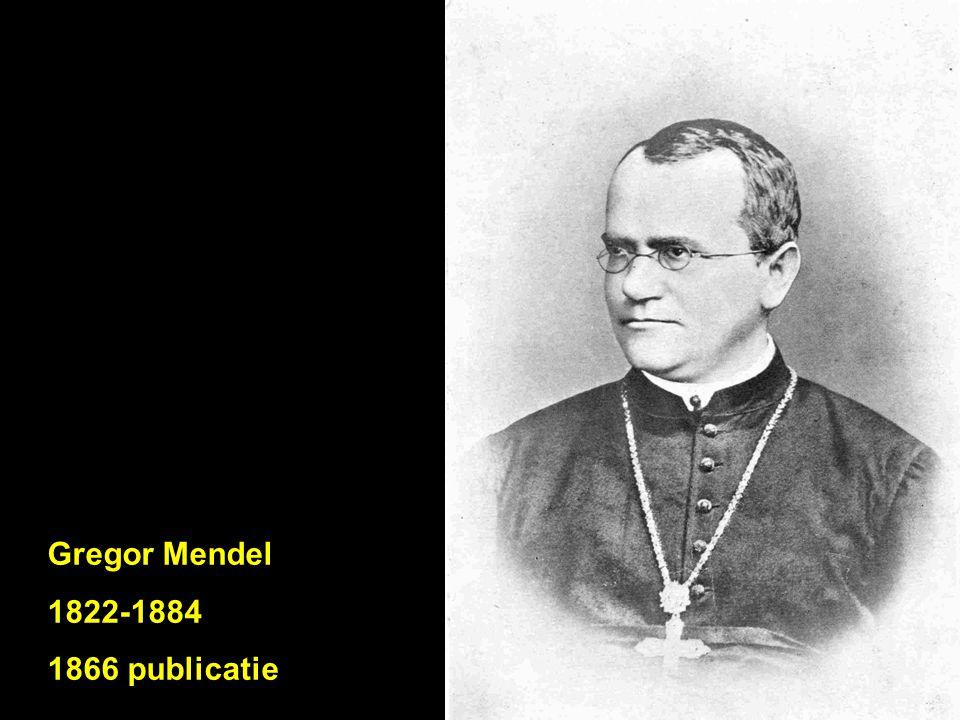 Gregor Mendel 1822-1884 1866 publicatie