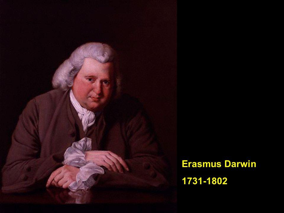 Familieportret van de Wedgwoods (uit 1780, geschilderd door George Stubbs) geheel rechts Josiah I (1730-1795), stichter van het aardewerk en porselein bedrijf, naast hem zijn vrouw Sarah (1734-1815), op tweede paard van links Susannah (1765-1817 – moeder van Charles Darwin) en rechts van haar Josiah II (1769-1843 – oom en later schoonvader van Charles Darwin)