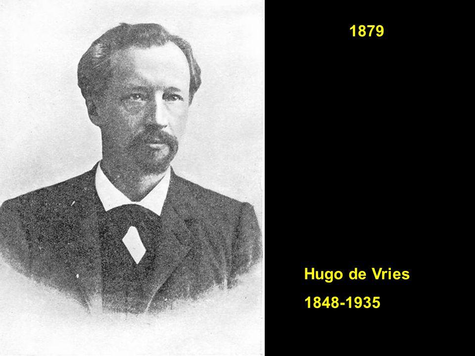 Hugo de Vries 1848-1935 1879