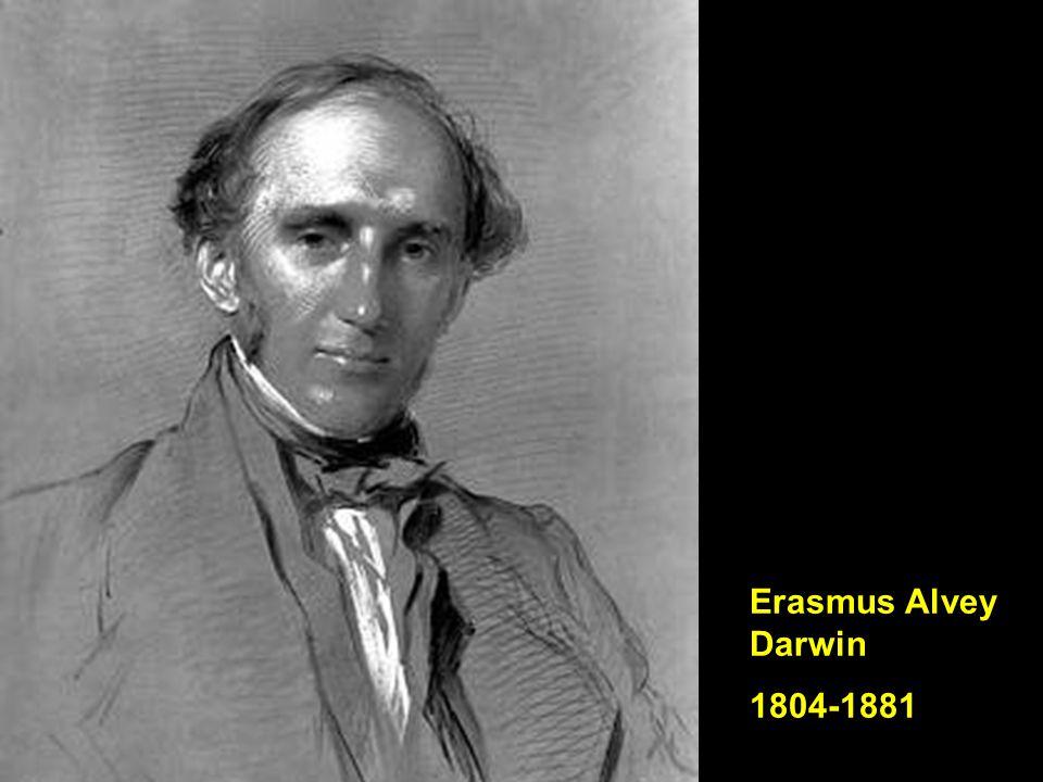 Erasmus Alvey Darwin 1804-1881