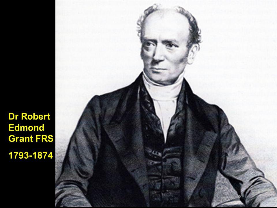 Dr Robert Edmond Grant FRS 1793-1874