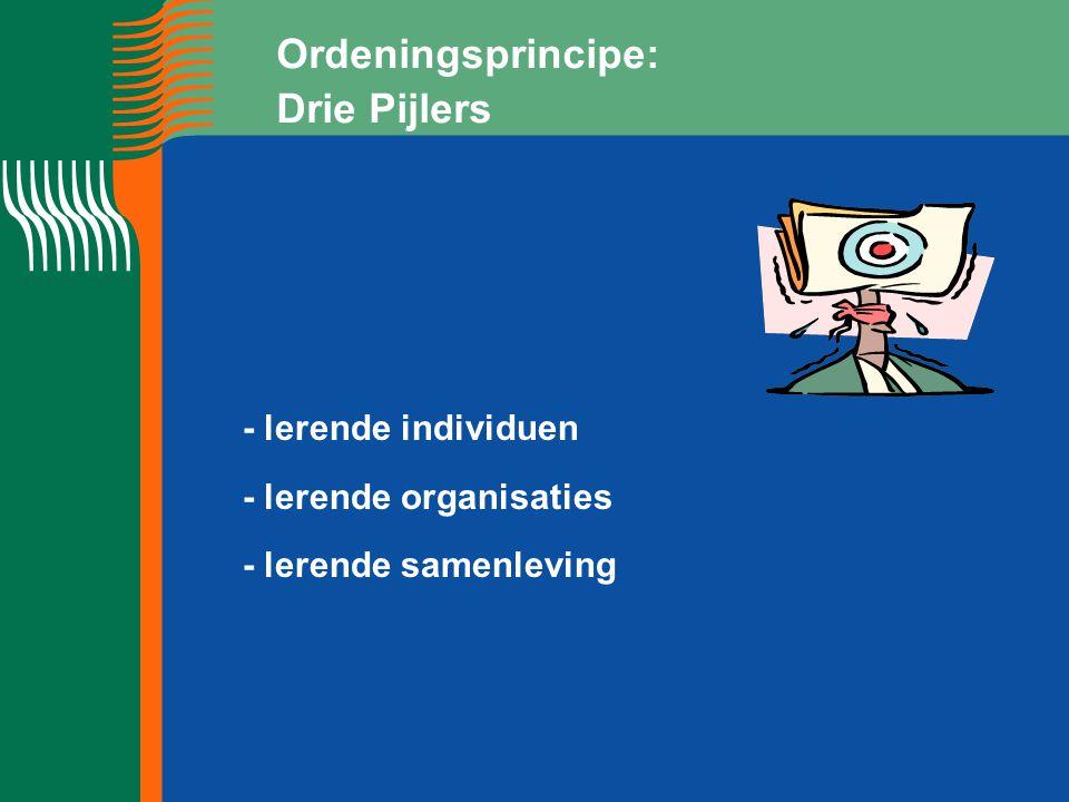 Ordeningsprincipe: Drie Pijlers - lerende individuen - lerende organisaties - lerende samenleving