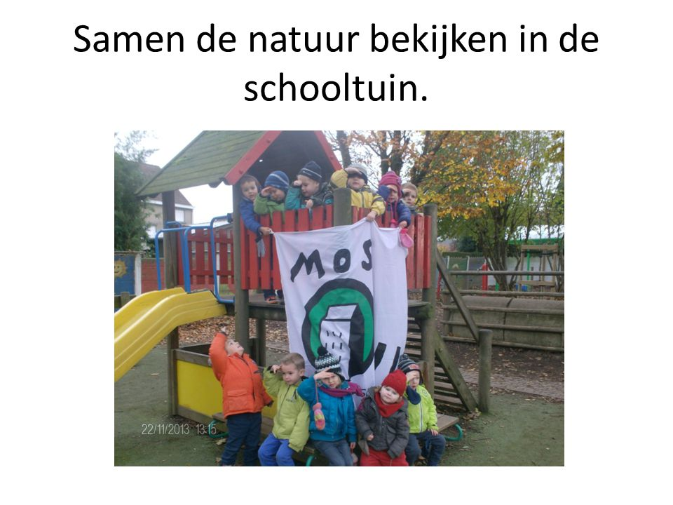 Samen de natuur bekijken in de schooltuin.