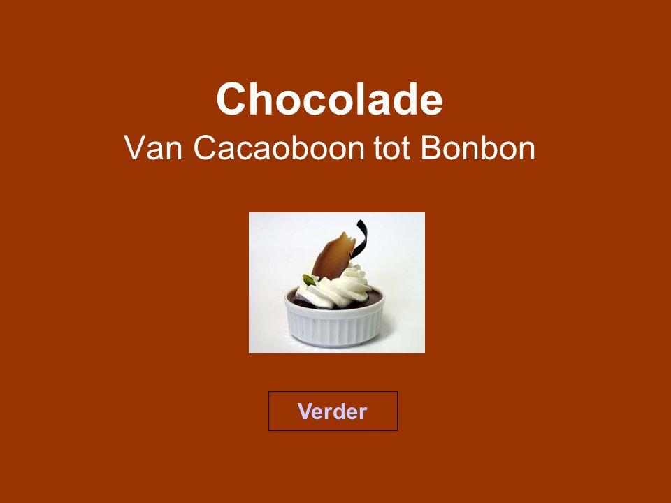 Index De geschiedenisDe aanbouwgebiedenVerwerking van cacao De CacaomassaDe Chocolade