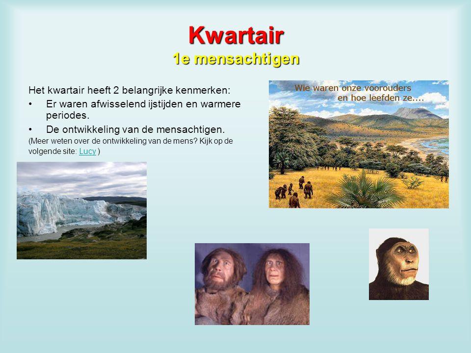Kwartair 1e mensachtigen Het kwartair heeft 2 belangrijke kenmerken: Er waren afwisselend ijstijden en warmere periodes. De ontwikkeling van de mensac