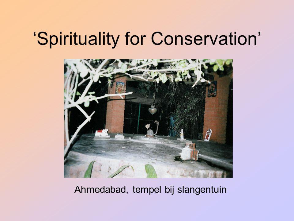 'Spirituality for Conservation' Ahmedabad, tempel bij slangentuin