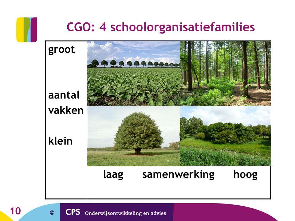10 CGO: 4 schoolorganisatiefamilies groot aantal vakken klein laag samenwerking hoog