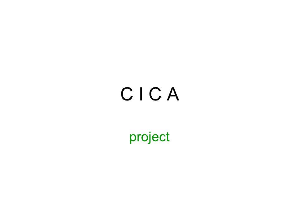 CICA project Student: Joris Goedbloed Inhoudelijke rol: User Experience Designer Productionele rol: Team Manager competentie analyseren 3 competentie ontwerpen 3 competentie realiseren communiceren 2 samenwerken 3 planmatig werken 2