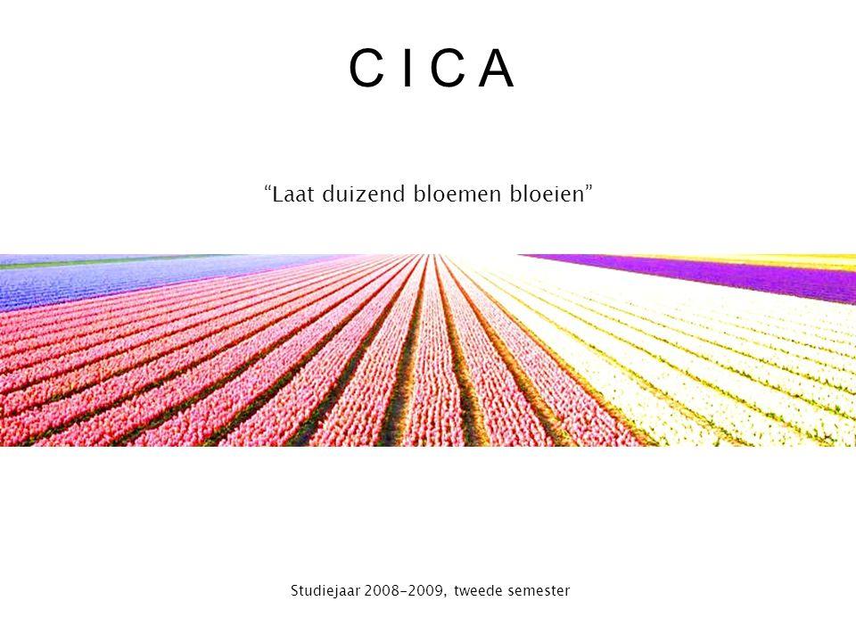 CICA project Vragen ?