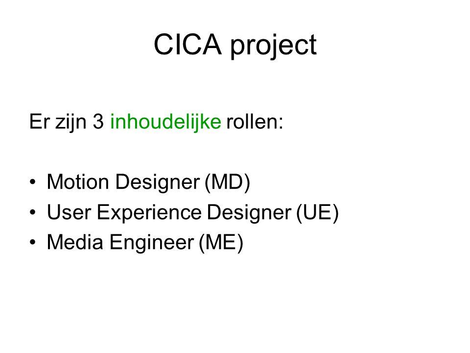CICA project Er zijn 3 productionele rollen: Project manager (PM) Communicatie manager (CM) Team manager (TM)