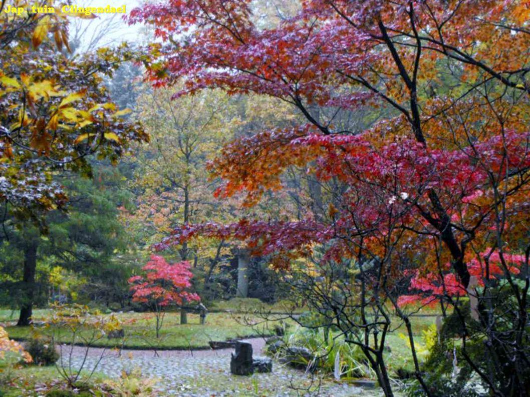 Japanse Landschapstuin Clingendaal japanse tuin Clingendaal japanse tuin. Clingendael japanse tuin Clingendael japanse tuin.