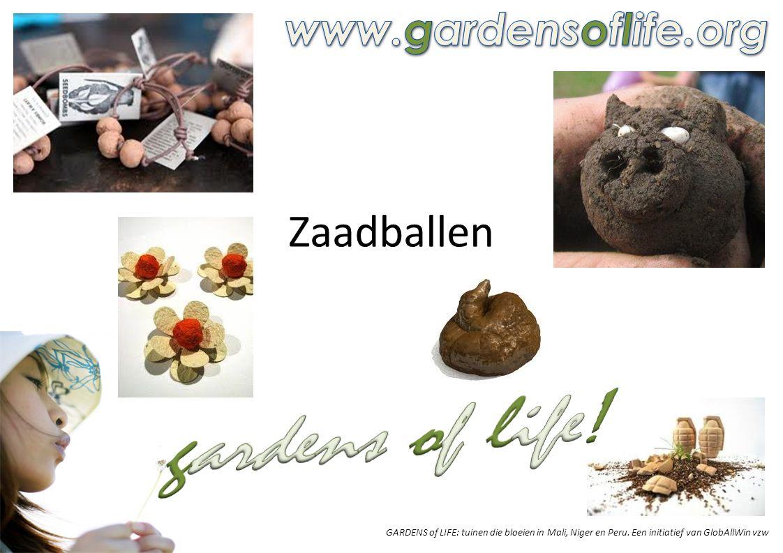 RECEPT 'ZAADBALLEN' Ingrediënten Veel heb je niet nodig: – 5 delen kleihoudende grond (zoek in de buurt van een beek) – 3 delen compost – 1 deel zaad uit een mengeling van inheemse bloemen als klaprozen, korenbloemen, goudsbloemen, margrieten… – kies winterharde bloemen, die al in maart of april mogen gezaaid worden en die tegen een vorstprik kunnen recept Meng de ingrediënten.