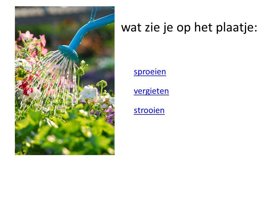 wat zie je op het plaatje: sproeien vergieten strooien