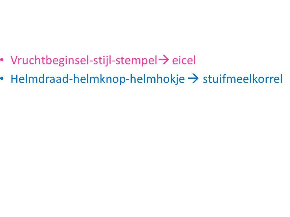 http://www.schooltv.nl/beeldbank/clip/200306 23_aardappelen02