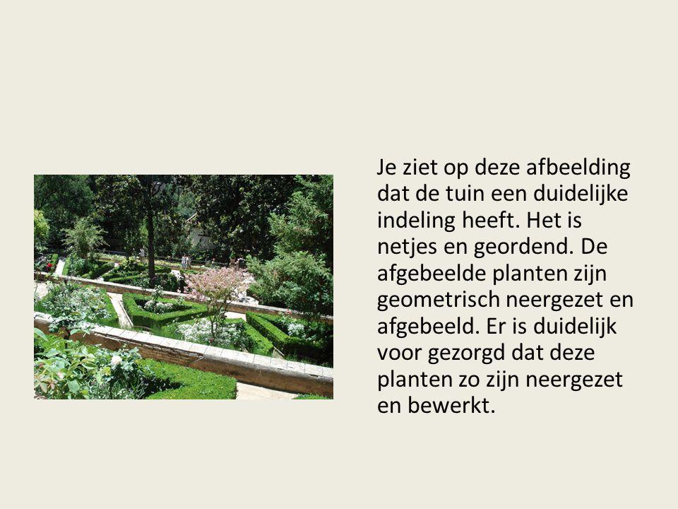 Je ziet op deze afbeelding dat de tuin een duidelijke indeling heeft. Het is netjes en geordend. De afgebeelde planten zijn geometrisch neergezet en a