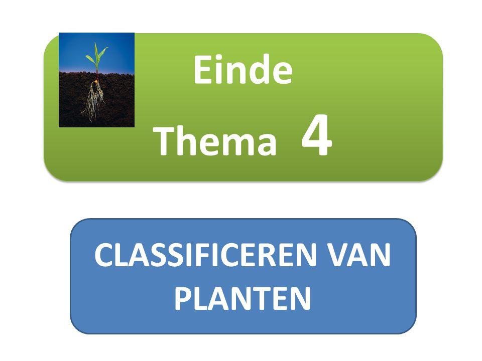 CLASSIFICEREN VAN PLANTEN Einde Thema 4 Einde Thema 4