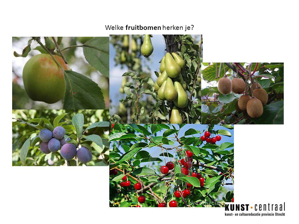 Welke fruitbomen herken je?