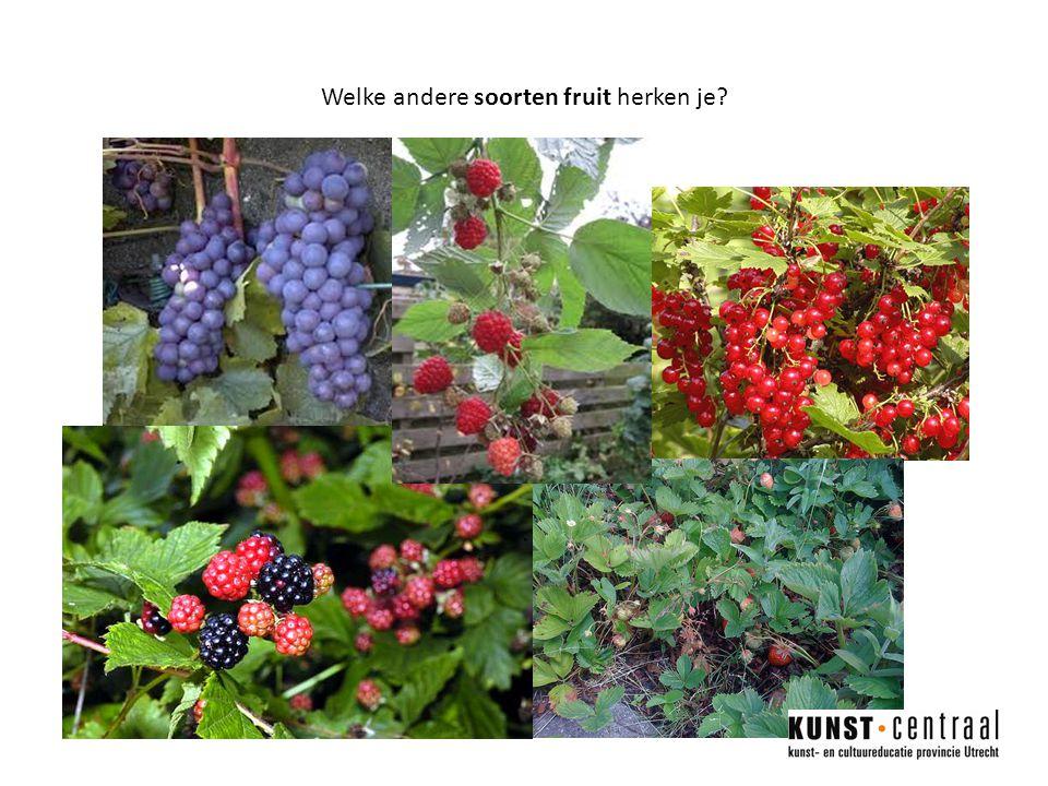 Welke andere soorten fruit herken je?