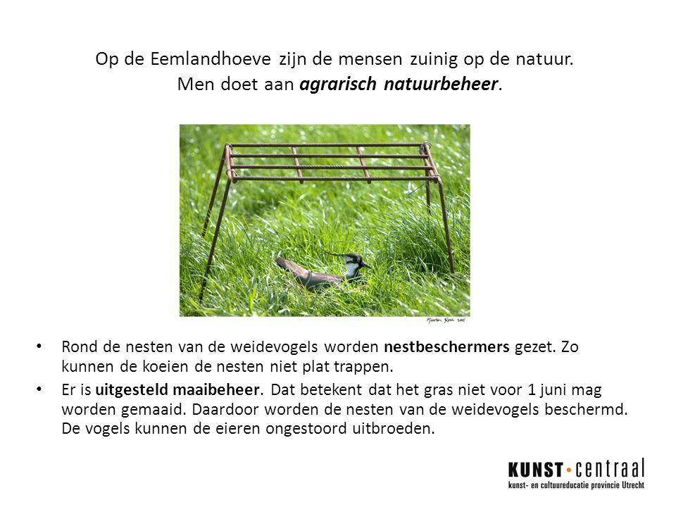 Rond de nesten van de weidevogels worden nestbeschermers gezet.