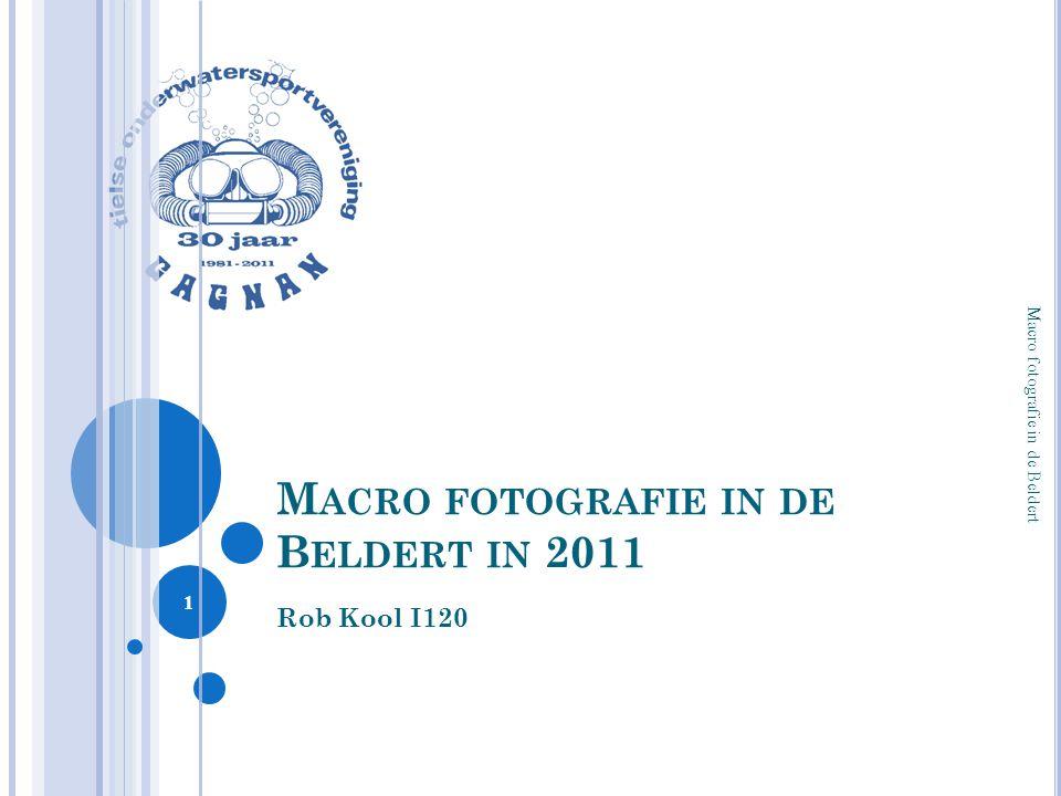 M ACRO FOTOGRAFIE IN DE B ELDERT IN 2011 Rob Kool I120 Macro fotografie in de Beldert 1