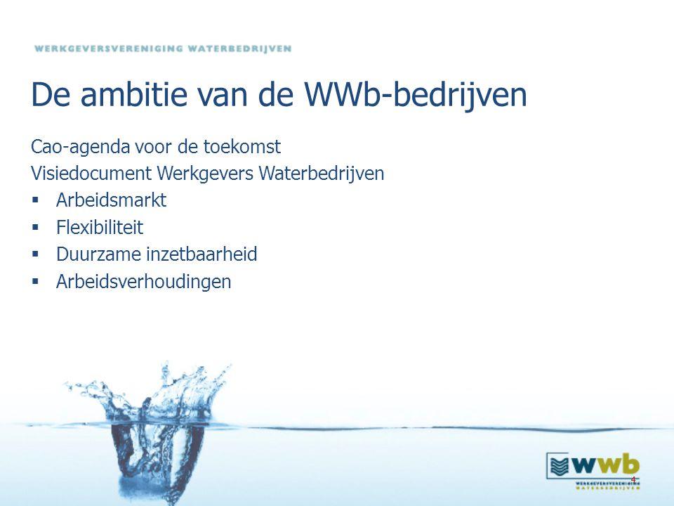 15 Regieteam Vertegenwoordigers van vakbonden, werkgevers, or-platform en WWb Rol: Begeleiden proces van de Cao-Doetank Doet.