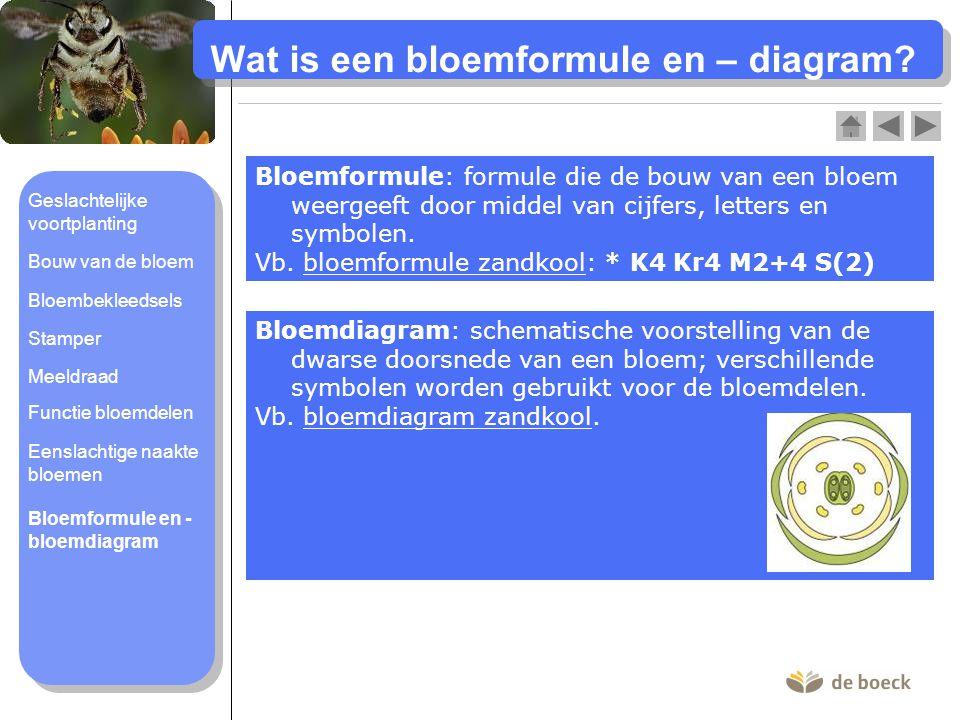 Kroonbladeren (bloemkroon) Kelkbladeren (bloemkelk) Bloembodem Bloemsteel Bosaardbei