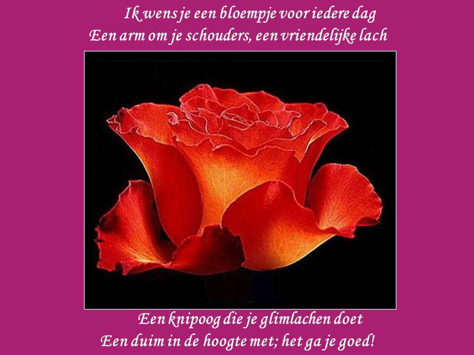 Ik wens je een bloempje voor iedere dag Een arm om je schouders, een vriendelijke lach Een knipoog die je glimlachen doet Een duim in de hoogte met; het ga je goed!