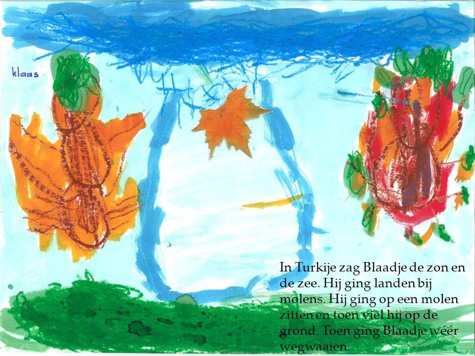 In Turkije zag Blaadje de zon en de zee. Hij ging landen bij molens. Hij ging op een molen zitten en toen viel hij op de grond. Toen ging Blaadje wéér