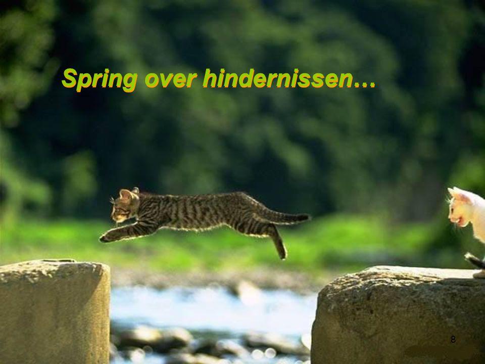 8 Spring over hindernissen… Spring over hindernissen…