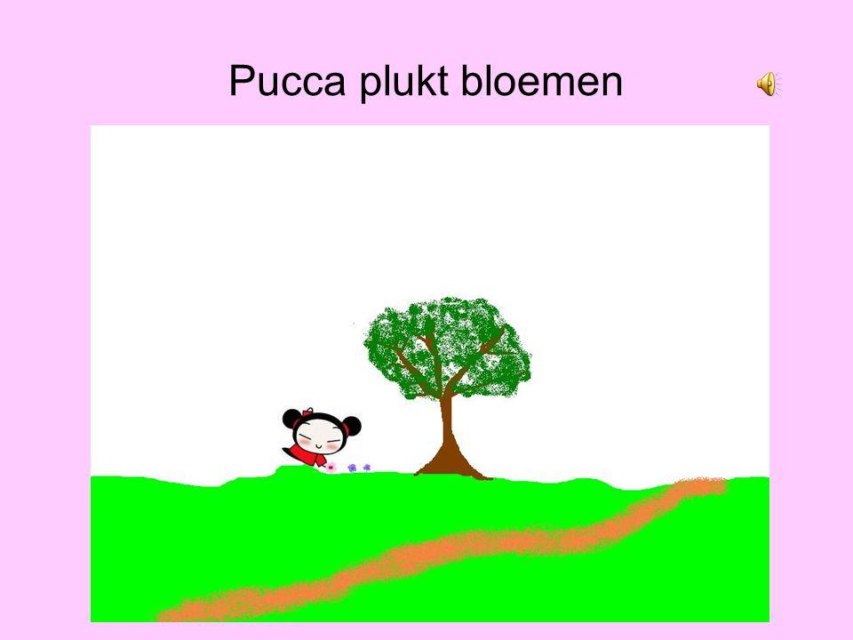 Pucca verdwaalt In Het bos