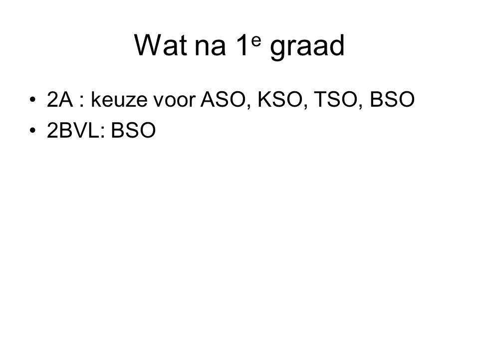 Wat na 1 e graad 2A : keuze voor ASO, KSO, TSO, BSO 2BVL: BSO